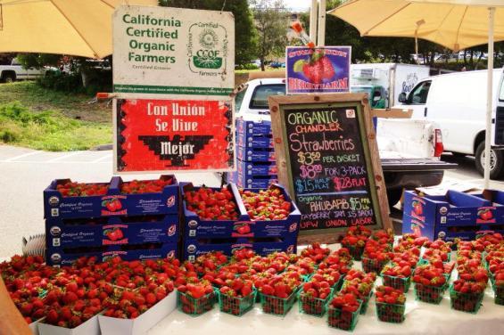 Swanton Berries