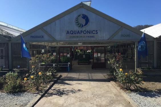 Aquaponics_Farms_HalfMoonBay