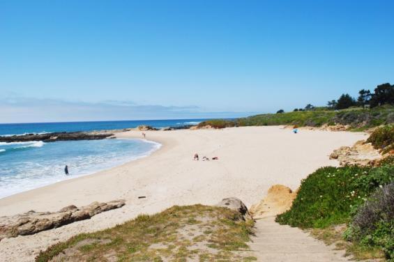 Pescedero_Beaches_Brittany_Westrum_(31).jpg