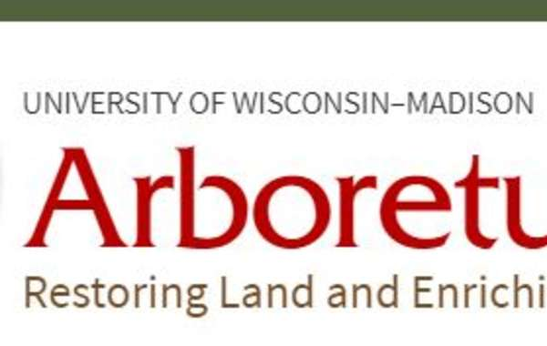 UW-Madison Arboretum Class: All About Owls