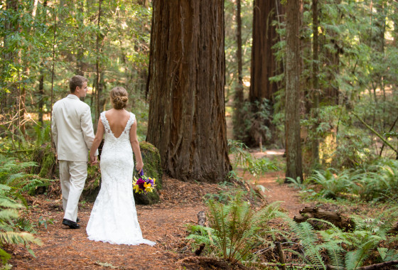 Weddings in Humboldt Redwoods State Park