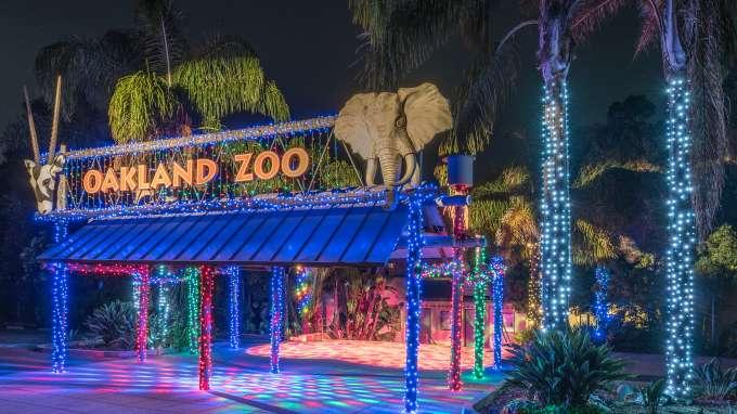 ZooLights: Oakland Zoo