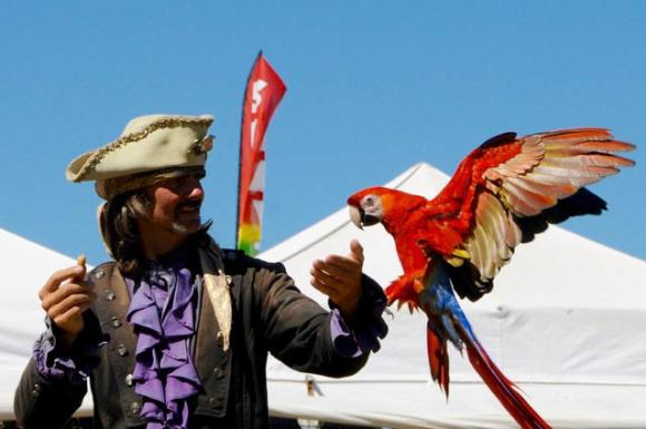 Pirate's Parrot Show at the Louisiana Pirate Festival