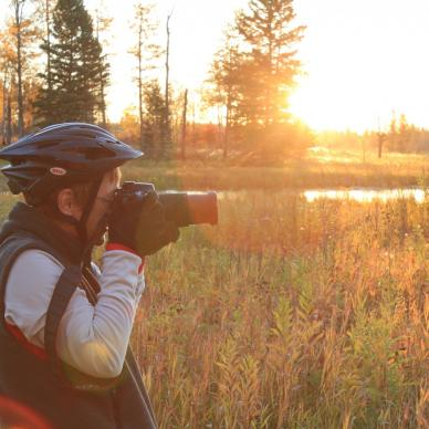 Photographing wildlife in Riding Mountain National Park