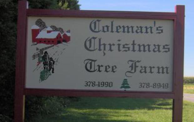 Colemans Christmas Tree Farm