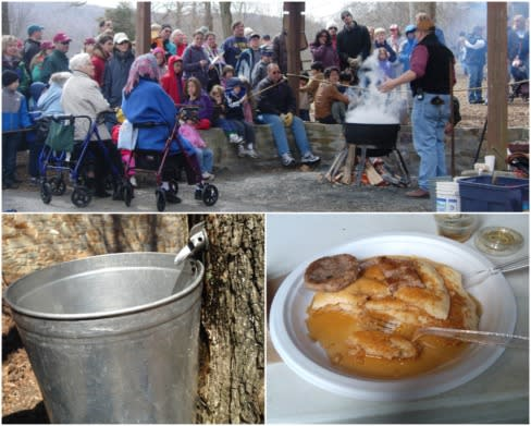 Maple Syrup Festival Photo Collage