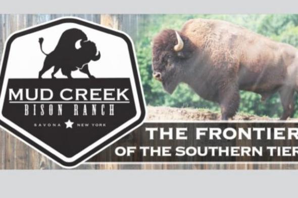 Mud Creek Bison Ranch logo