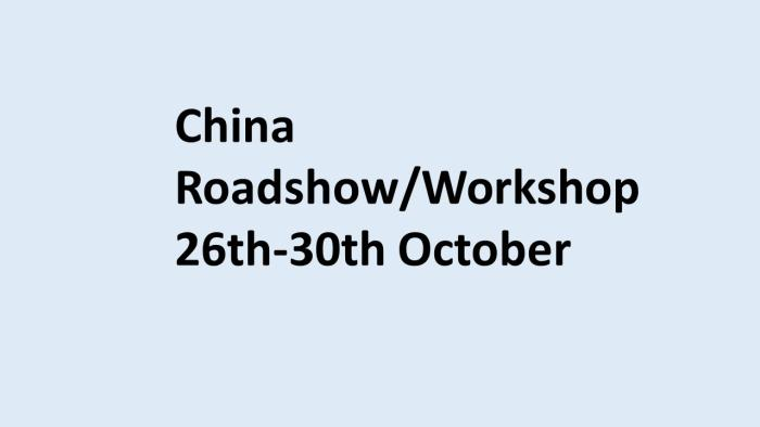 China workshop 2020