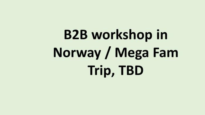 DE B2B workhop og Mega Fam