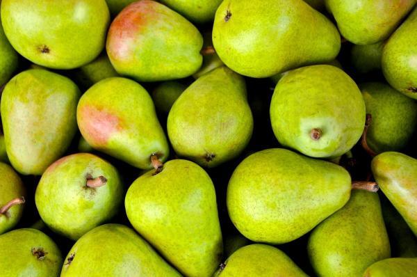 pear fair