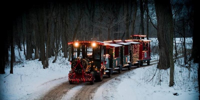 Peacock Christmas train