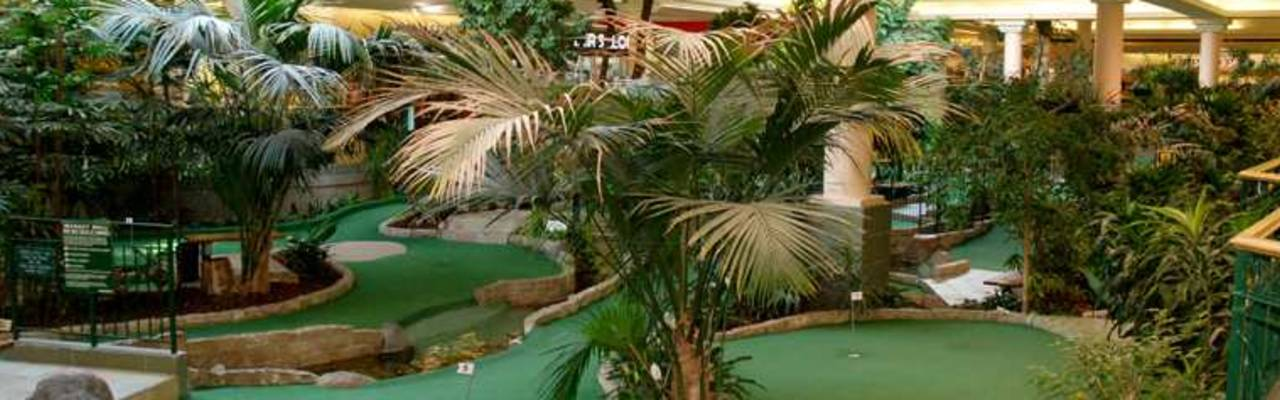 Market Mall Mini Golf