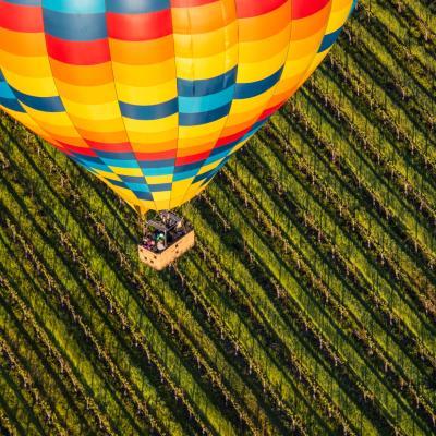 Hot Air Balloon over Napa Valley vineyard