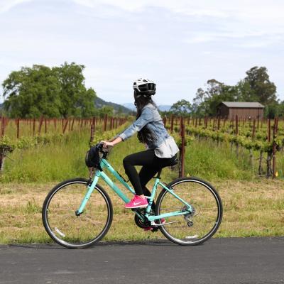 Biking the Napa Valley Vine Trail