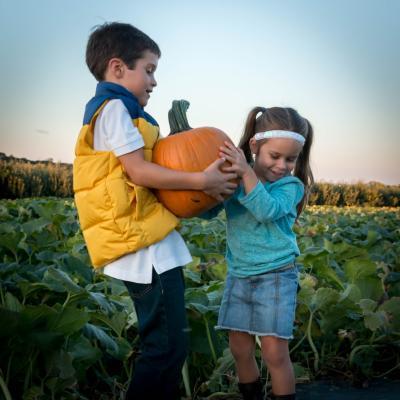 pumpkin-picking-fall-strites-family-bucket-list