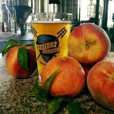 Photo credit: Panther Island Brewing