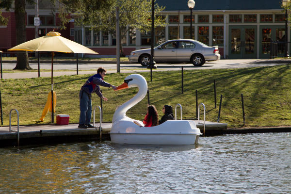 Swan Paddle Boats at Roger Williams Park