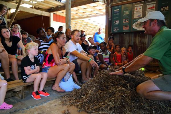 Visitors at Insta-Gator Ranch