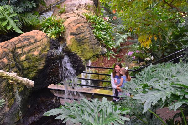 Botanical Conservatory - Tropical Garden
