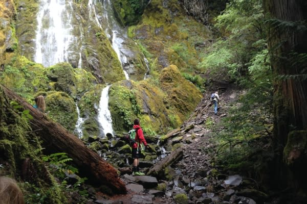 Hiking Moon Falls in Cottage Grove by Taj Morgan
