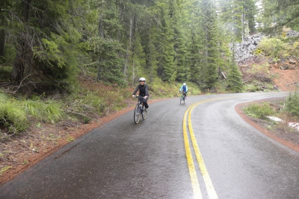 Hwy 242 McKenzie Pass Scenic Bikeway in Rain by Molly Blancett