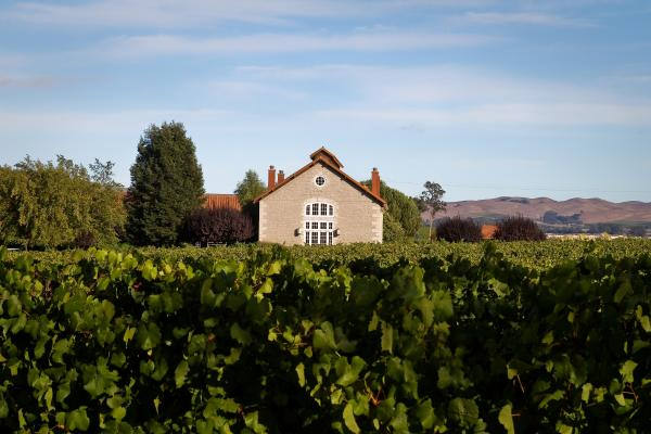 Etude Winery