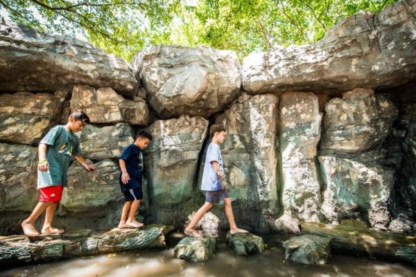 Houston Zoo wild nature area
