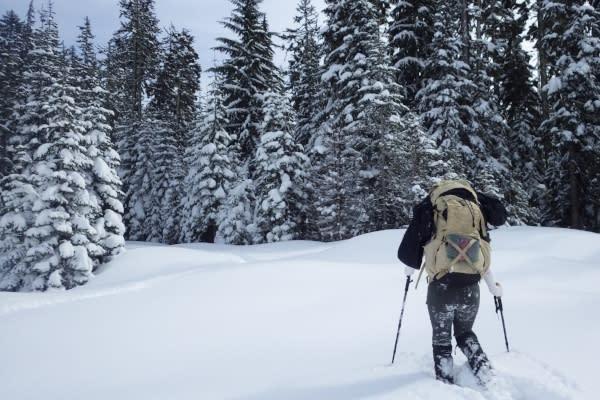 Snowshoeing Pengra Pass by Joey Jewell