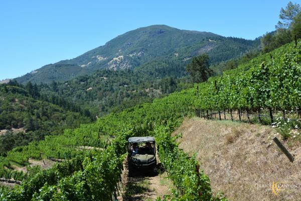 Jericho Canyon Winery ATV Tour