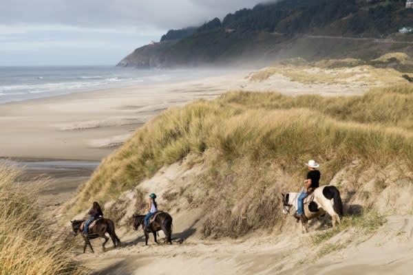 Florence Horseback Riding by Tyler Roamer