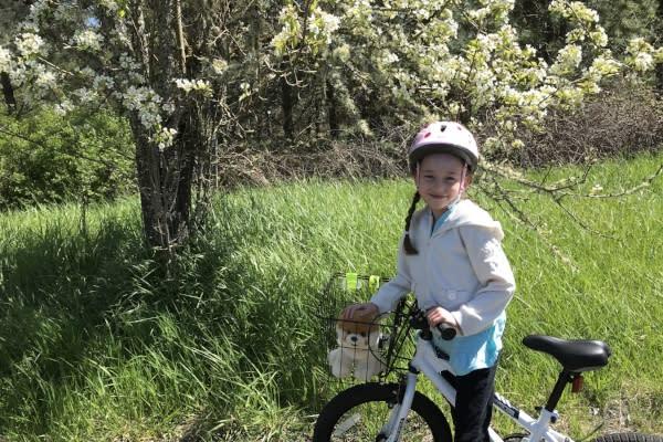 Spring blossoms along the Row River Trail by Taj Morgan