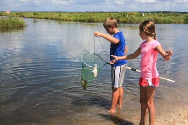 Crabbing in Lacombe