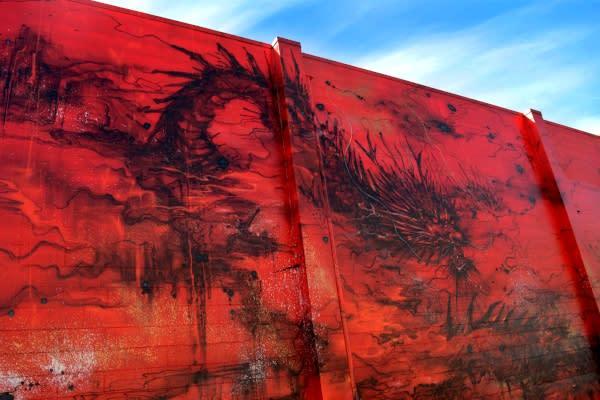 20x21 Mural by Hua Tunan by Colin Morton