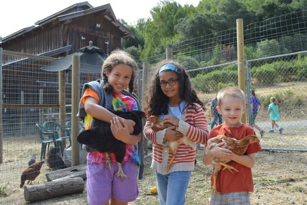 3 kids holding chickens and roosters Connolly Ranch