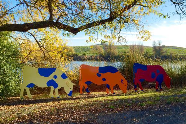 3 painted sculpture cows at di Rosa