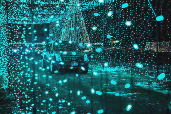 Holiday Lights in Utah Valley - Christmas in Color