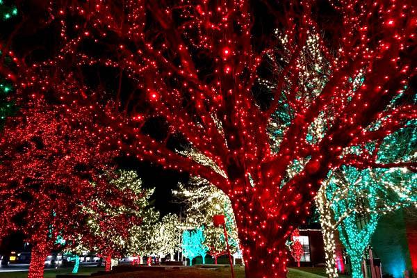 Holiday Lights in Utah Valley - Orem