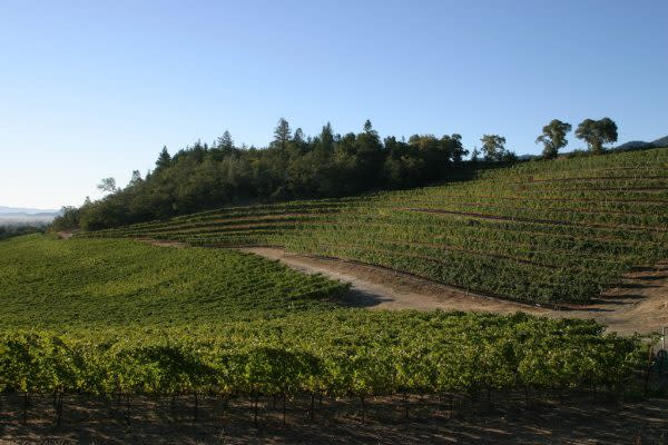 Fantesca Estate & Winery