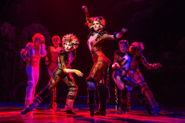 """Performers in """"Cats"""" Musical"""