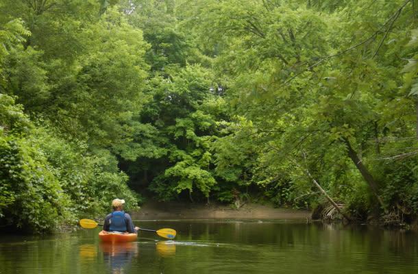 Blog - Great Kayaking 1