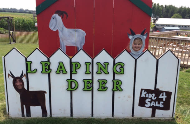 Blog - Why Visit a Farm