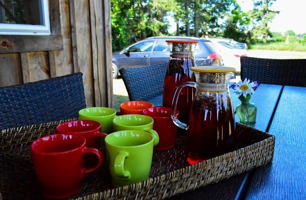 Wildflower Teas tea sample