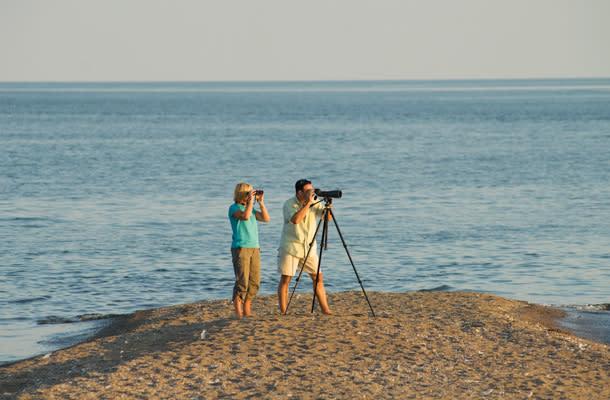 Go coastal blog 4