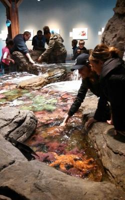 Seattle Waterfront Aquarium