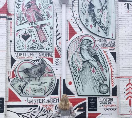 A mural on the side of Philantrophy of a wide variety of birds.