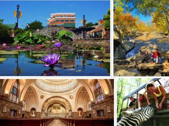 Route 15 Collage - Hiking, People Hand-Feeding a Zebra, Seton Shrine, and Downtown