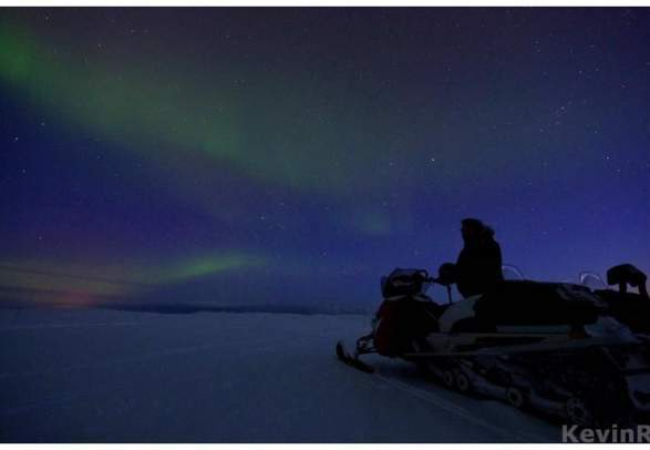 Northern Light - Nordic Safari