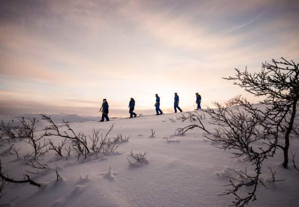 SnowhotelKirkenes - Snowshoe walking