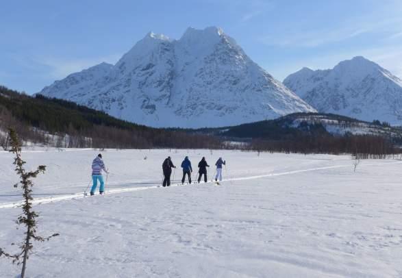 Skilanglauftouren und Kurse in den Lyngenalpen