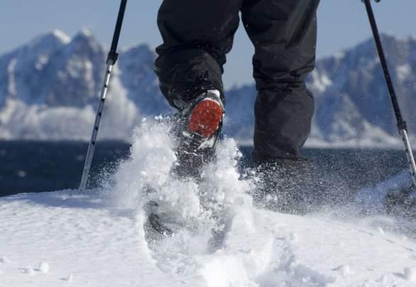 Snowshoeing halfday with Lofoten Aktiv